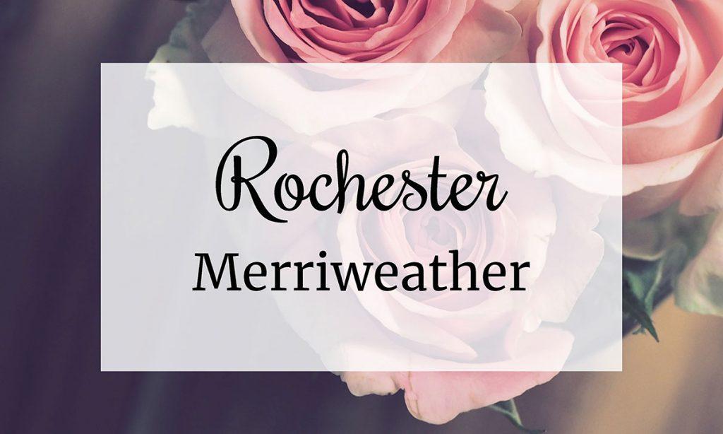 Rochester, Merriweather, font, digital marketing, brand, grafica, social media